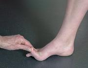 Functionele anatomie en kinematica van de voet