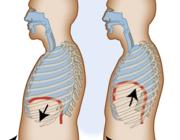 Fysiotherapeutische behandeling van maag-darmziektes (AF, BD)