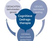 Acceptatie en commitmenttherapie in de fysiotherapeutische praktijk (BD)