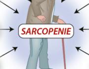 Sarcopenie, etiologie en interventies